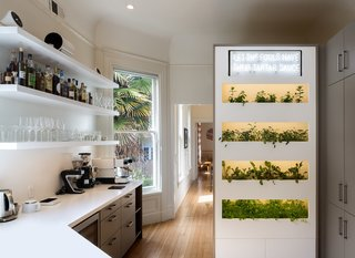 the-kitchen-enjoys-natural-light-and-features-white-corian-counters-custom-powder-coated-aluminum-shelves-and-a-wallygro-greens-wall-with-automatic-watering-and-lighting-integration-the-family-uses-the-greens-and-herbs-in-their-meals.jpg
