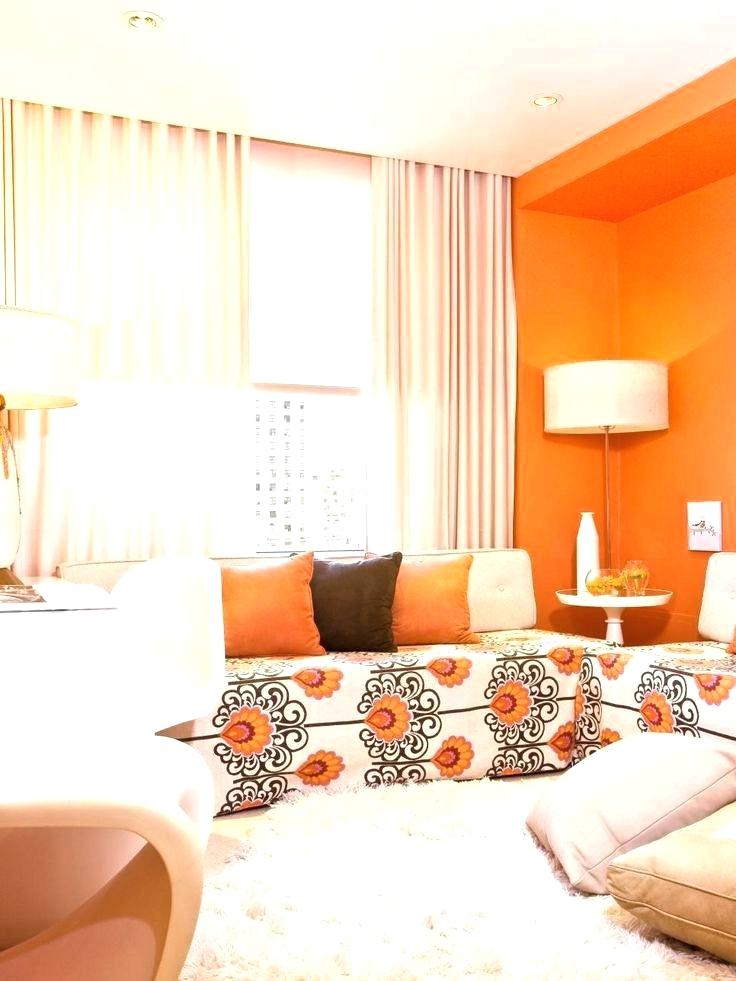 orangeapartment-living-room-color-schemes-design-colour-scheme-small-amusing-orange-ideas-and-awesome-a