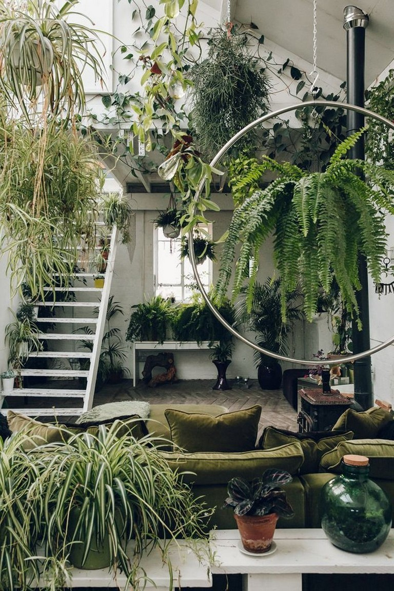 25-Lovely-Indoor-Jungle-Ideas-That-Will-Enhance-Your-Room-1