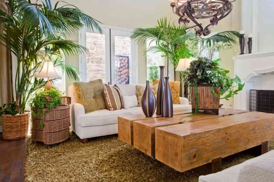 living-room-lots-of-plants-hs