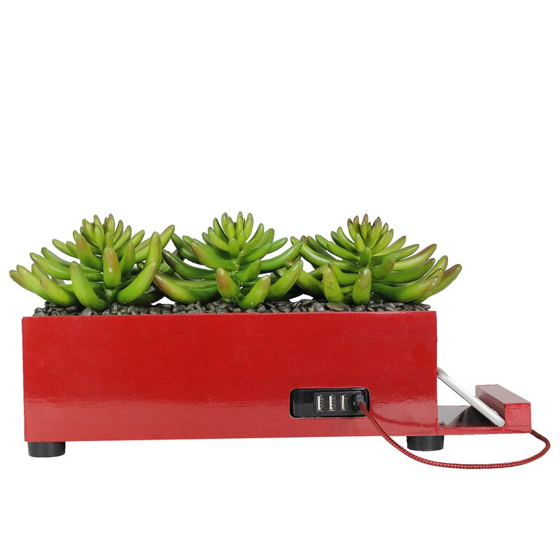Decorative+USB+Charging+Plant+Aloe+Succulent+in+Planter