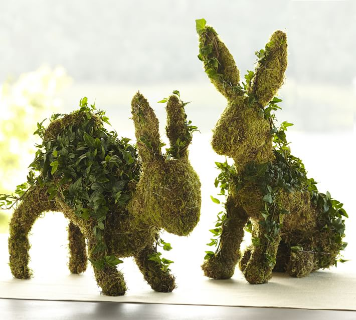Fresh Ivy Bunny Topiaries