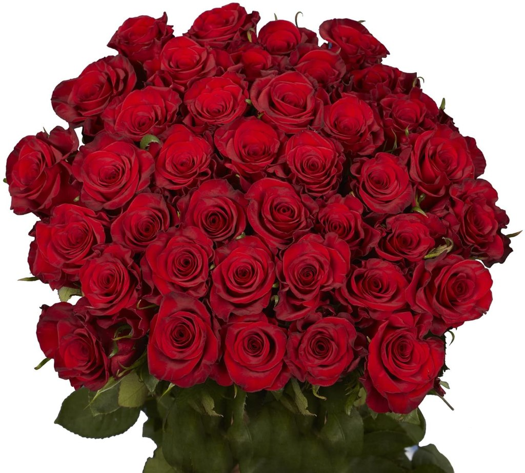 50 Red Roses for Mothers Day- Fresh Cut Flowers- Guaranteed Delivery by Friday May 7